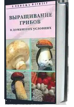 Выращивание набора грибов в домашних условиях 175